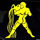 Decal Astrological sign Aquarius (v.II)