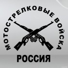 Decal Motorized troops Russia Two guns