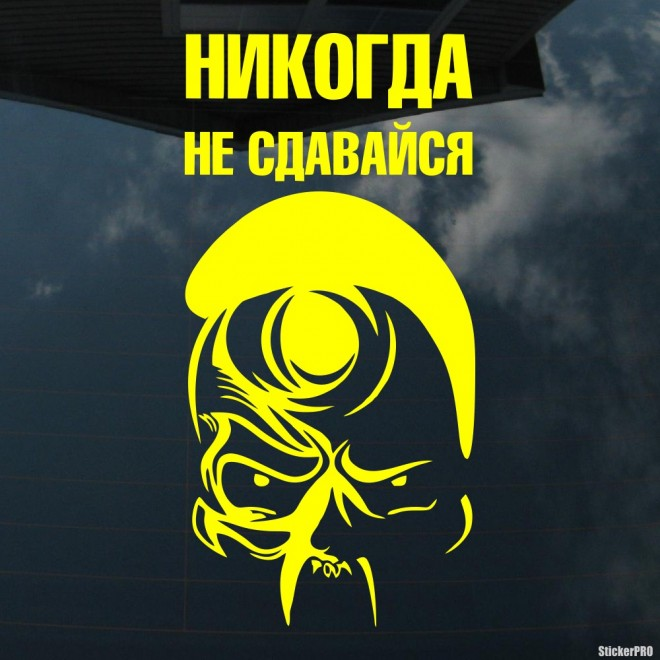 Decal Airborne troops. Skull Never Back Down