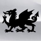 Decal Dragon 31
