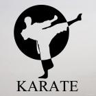 Decal karate Sun
