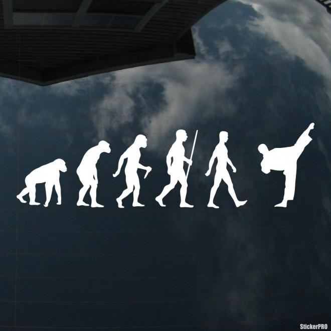 Decal karate evolution