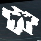 Decal karateka sparring