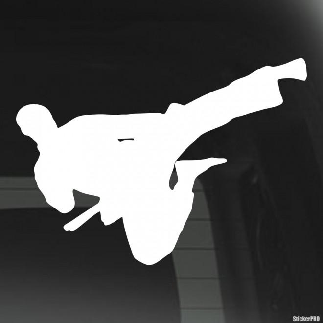 Decal karateka kick in the air 2