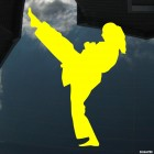Decal karate girl kick