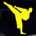 Decal karateka kick 2