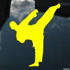 Decal karateka kick 3