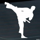 Decal karateka