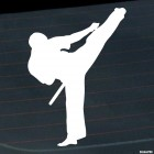 Decal karateka kick