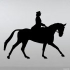 Decal show jumping horse and rider, equestrian