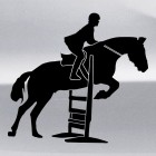 Decal show jumping over a hurdle, equestrian