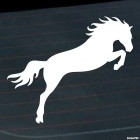 Decal show jumping horse, horse riding