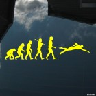 Decal swimming evolution
