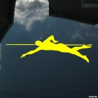 Decal swimming front crawl stroke water level