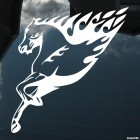 Decal horse with flames